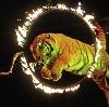 Цирки в Адыгейске